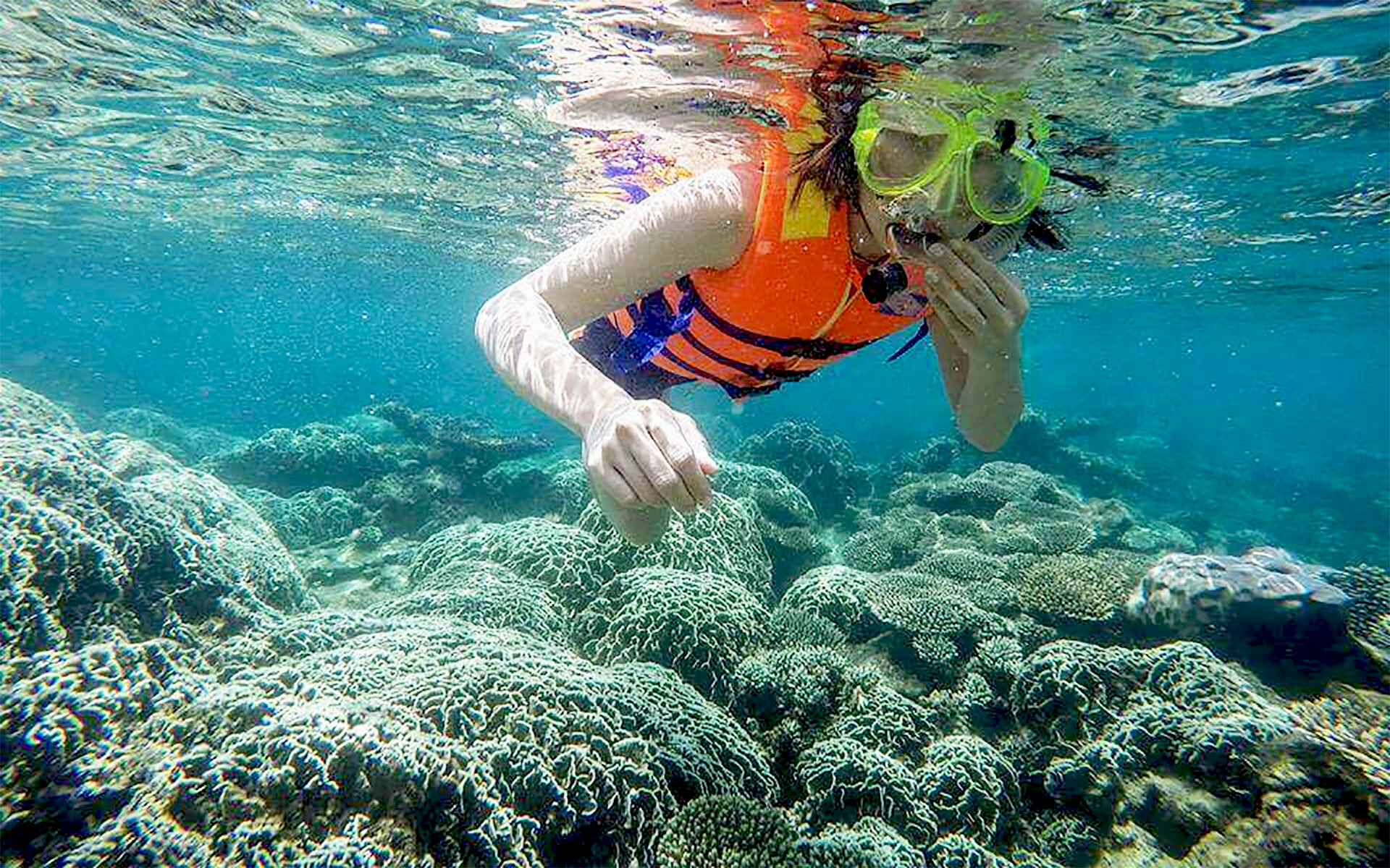 TOUR DISCOVER HON NUA ISLAND - DIVING WITH CORAL - ENJOY SEA FOOD ON FLOATING RAFT (1 DAY)